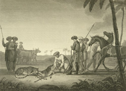 The Conclusion of the Cheeta Hunt at Cambay, from an original drawing by Lady Malet